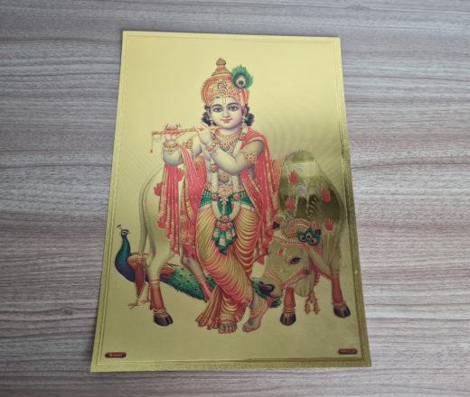 folha laminada de Krishna criança
